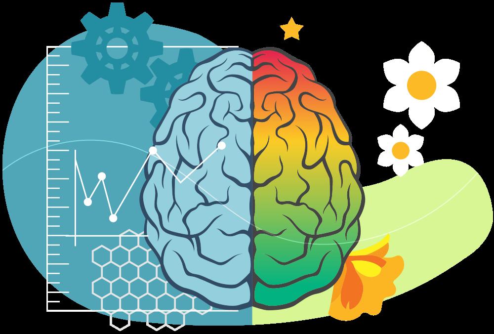 Como os lados do cérebro influenciam na inteligência emocional